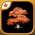 Fire Maple Games Collection 1.0.9 Apk Full + Data for android